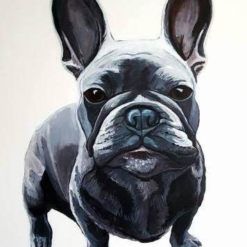 french-bulddog-portret