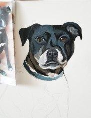 Oil-on-canvaspet-portrait-Staffordshire-Bull-Terrier-detail