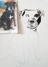Oil-on-canvaspet-portrait-Staffordshire-Bull-Terrier1