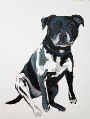 Oil-on-canvaspet-portrait-Staffordshire-Bull-Terrier4