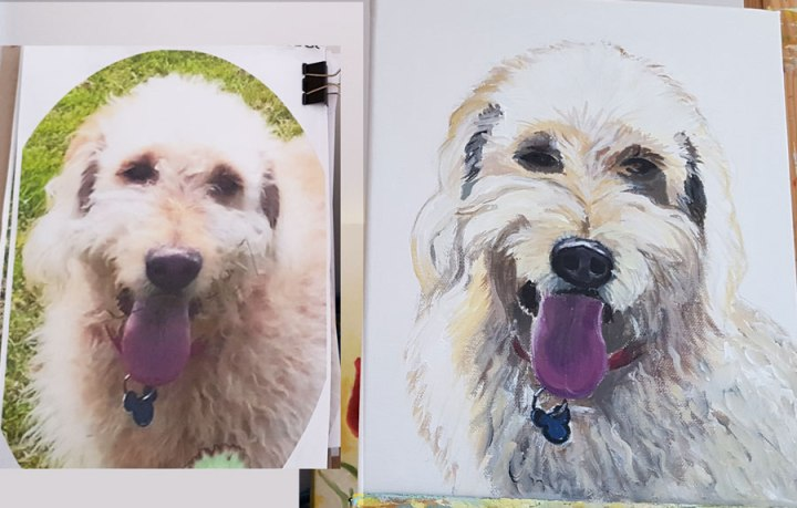 new-commissioned-pet-portraitAcrylic-on-canvas