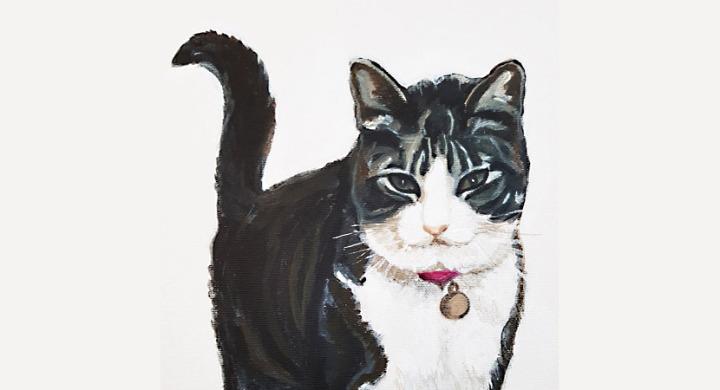Cat portrait for Christmaspresent