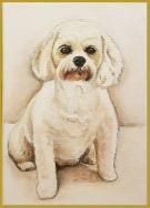 pewhite-cavechont-portraitacrylic-on-canvas-commissioned-swindon