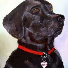 black-labrador-custom-gift-pet-portrait-personalised-oil-on-canvas-commissioned-swindon