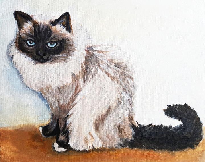 Siamese-cat-portrait-acrylic-on-canvas-commission-pet-portrait-beautiful-gift-order-now.Bristol